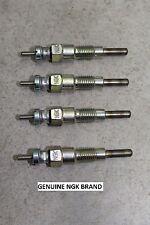 SET of 4 743 Bobcat Fast Heat NGK Glow Plugs 643 V1402 V1702 V1902 Diesel