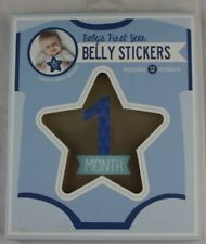 Cr Gibson Baby Boy Star Month Stickers