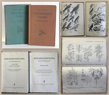 Streesemann Exkursionsfauna & Rothmaler Exkursionsflora von Deutschland 1955/59