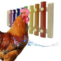 Chicken Xylophone Toy 8 Keys Chicken Pecking Toy Suitable for Hen Chicken C