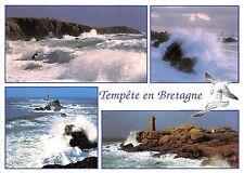 B50448 Tempete en Bretagne Coup de vent sur la cote   france
