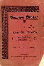 """D. LUTHER JOHNSON - """"CEINION MOES"""" - WELSH POEMS - CAPEL DEWI, LLANDYSUL (1909)"""