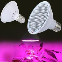 200LED 30W Plant Grow Light Full Spectrum Lamp Indoor Greenhouse Veg Flower
