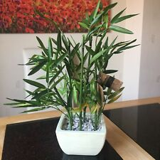 Artificial INDOOR POTTED BAMBOO PLANT IN DISTRESSED BLACK Ceramic Planter 45CM