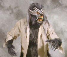 Complete Werewolf Gray Wolf  Adult Halloween Costume Mask Gloves Chest