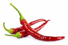 Cayenne Red Hot Chili Pepper Seeds 50 PCS