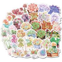 50 Succulent plant Stickers bomb Vinyl Skateboard Luggage Laptop Decals Sticker