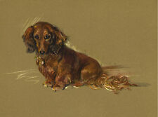 DACHSHUND CHARMING DOG GREETINGS NOTE CARD BEAUTIFUL LONG HAIRED DOG SITTING