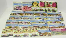 30 Packs Seed Lot of Flowers Over $95 Value Wildflowers, Sunflower, Snapdragon