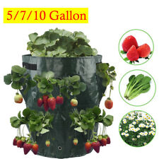 5 7 10 Gallon Garden Flower Tomato Strawberry Planter Grow Bag Plant Pouch Bag