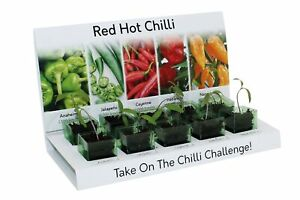 Hot Chilli Grow Your Own Kit Includes Everything to Grow 5 Varieties From Seed