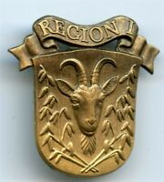 Denmark Home Guard  Insignia Collar Badge Region I