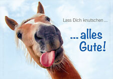 "A6 Postkarte Tierpostkarte, Pferdepostkarte Geburtstagskarte Pferd ""Alles Gute!"""