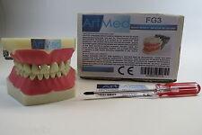 Model Anatomy Typodont Dental Teaching Model Type Frasaco Model FG3 ARTMED