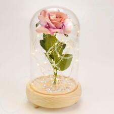 Antique Pink Handmade Enchanted Rose in Glass Dome Bell Jar with LED Lights