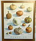 Cooks Illustrated  BACK COVER ONLY  Framable  Art  John Burgoyne  PUMPKINS