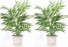 "2 PHOENIX PALM 36"" PLANT ARTIFICIAL SILK TREE BUSH NOT IN URN SHOWN"