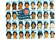 1978 CHICAGO CUBS  8X10 TEAM PHOTO BASEBALL ILLINOIS USA BUCKNER OLIVER