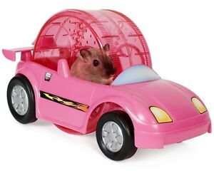 Kaytee Critter Cruiser for Small Animals, Colors Vary