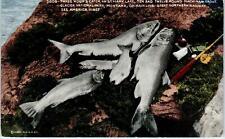 GLACIER NATIONAL PARK  Mackinaw Trout Caught ST. MARY LAKE Fishing 1931Postcard
