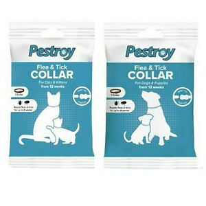 Pestroy Dogs Flea and Tick Repellent Flea Collar DOGS CATS Insect Repellent 8 Wk