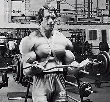 "065 Arnold Schwarzenegger - Bodybuilder Mr Olympia Universe 15""x14"" Poster"