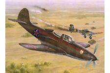 SPECIAL HOBBY SH32028 1/32 P-39N/Q Soviet Guard Regiments