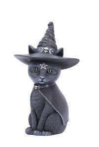 Purrah 13.5cm Cult Cuties Nemesis Now B5238S0 Occult Witches Hat Black Cat