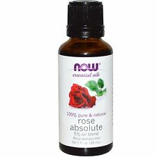 Rose Absolute Oil 5% Blend, 1 oz - NOW Foods Essential Oils