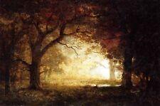 "Huge Oil painting impressionism landscape Forest Sunrise canvas 36"""