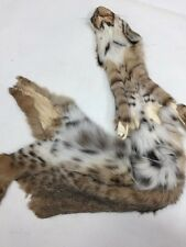 "33"" Length NEW LYNX FUR SKIN HEAD PAWS"