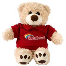 RAINBOW TEDDY WEARING A RAINBOW HOODED JACKET RAINBOW UNIFORM NEW