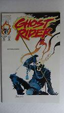Marvel Comics-Ghost Rider