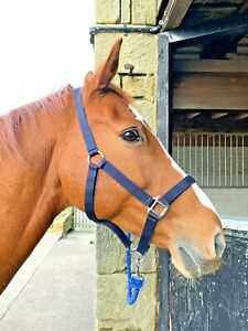 Excellent Quality Headcollar for Pony / Horse Soft Strong Durable and Robust
