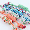 Funny Puppy Dog Pet Chew Toy Cotton Braided Bone Rope Color Chew Knot
