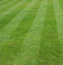 FINE LAWN GRASS SEED 10KG FOR EXCEPTIONAL QUALITY LAWNS  (Defra Reg. 7130)
