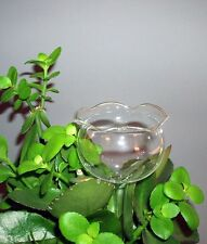 Durstkugeln 4 Stück Gießblume Bewässerungskugel Durstkugel Pflanzensitter GBL