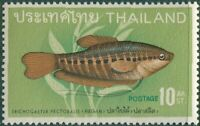 Thailand 1968 SG594 10c Snakeskin Gourami MNH