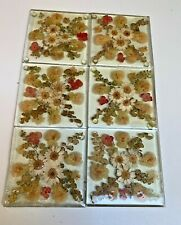 Vintage lot 6 Pressed dried wild flower~Lucite on glass Coasters