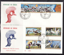ASg/ Sénégal   gde  enveloppe  1er jour oiseaux du parc du Djoudj  1974