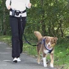 Laisse mains libres en nylon pour chien