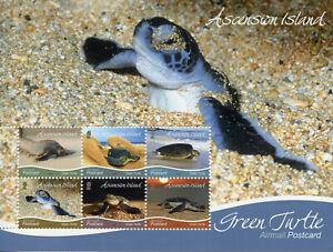 Ascension Island Turtles Stamps 2019 MNH Green Turtle R/P Reptiles 6v M/S