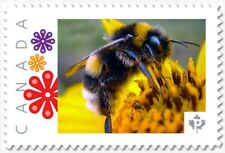uq. BEE = BUMBLEBEE = Picture Postage stamp MNH-VF Canada 2019 [p19-02sn24]