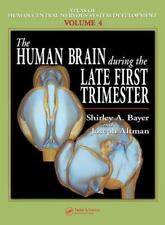 The Human Brain During the Late First Trimester (Atlas of Human Central Nervous