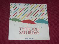 "Typhoon Saturday:  What do I do?    7""   EX"