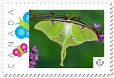 uq. BUTTERFLY = MOTH LUNA =Picture Postage stamp MNH-VF Canada 2019 [p19-02sn11]