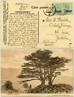 BRITISH LEVANT 1910 LEBANON HOTEL GASSMANN SARRAFIAN PPC MESSAGE COOKS ITINERARY