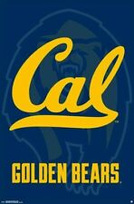 CALIFORNIA GOLDEN BEARS ~ OUTLINE LOGO 22x34 POSTER NCAA University College