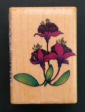 GARDEN FUCHSIA GARDEN FLOWER PLANT Comotion Wood Mounted Rubber Stamp