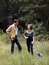 Natalie Wood and Robert Wagner rare image together walking dog 1970's 4x6 photo